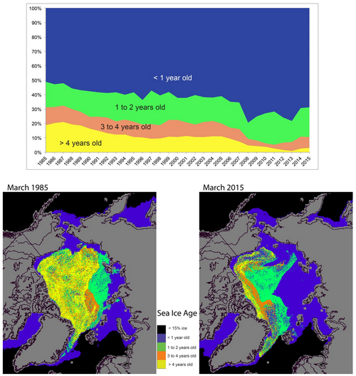 Arctic multiyear sea ice from Arctic Report Card.png