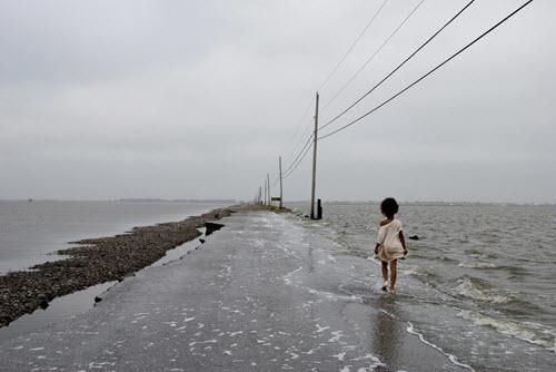 Isle de Jean Charles.jpg