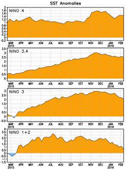 Niño Region SST Departures Recent Evolution as of 2016-02-10.jpg