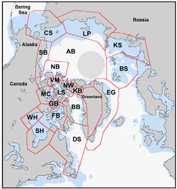 Stern and Laidre 2016 - Fig 1 - 19 PBSG polar bear subpopulation regions.jpg