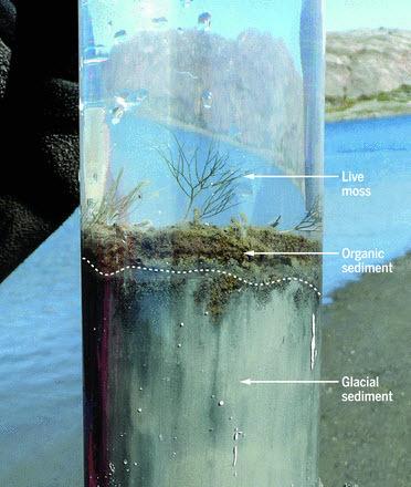 Waters et al 2016 - Ice core figure.jpg