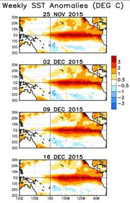 Weekly SST Anomalies 2015-11-25 - 2015-12-16.jpg